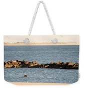 Diving Coney Island Weekender Tote Bag