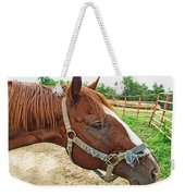 Do I Have Hay On My Nose Weekender Tote Bag