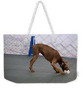Dobie Retrieving Dumbbell Weekender Tote Bag