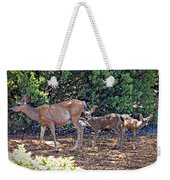 Doe And Twin Fawns Weekender Tote Bag