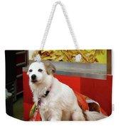 Dog At Carnival Weekender Tote Bag