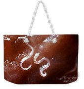 Dog Hookworm Weekender Tote Bag