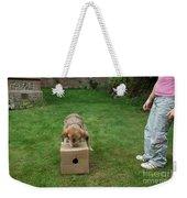 Dog Playing Weekender Tote Bag