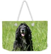 Dog Sitting On The Green Grass Weekender Tote Bag
