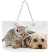 Dog Surrendering To Kitten Weekender Tote Bag