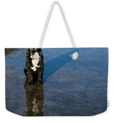 Dog With Reflections And Shadow Weekender Tote Bag