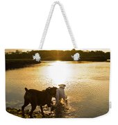 Dogs At Sunset Weekender Tote Bag by Stephanie McDowell