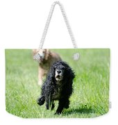 Dogs Running On The Green Field Weekender Tote Bag