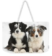 Dogs With Different-colored Eyes Weekender Tote Bag