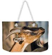 Domestic Goat Weekender Tote Bag