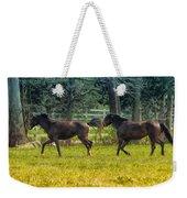 Domestic Horses Weekender Tote Bag