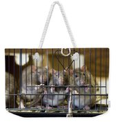 Domestic Rats At The Sutton Avian Weekender Tote Bag