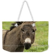 Donkey - The Beast Of Burden Weekender Tote Bag