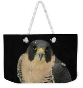 Don't Flinch... I Am Looking At You Weekender Tote Bag