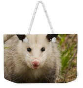 Don't Mess With Me Opossum Weekender Tote Bag