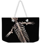 Dorudon Skeleton Weekender Tote Bag