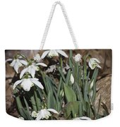 Double Snowdrops Squared Weekender Tote Bag
