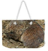 Down Right Dirty Mole Weekender Tote Bag