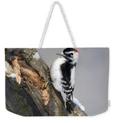 Downy Woodpecker Perched In A Tree Weekender Tote Bag