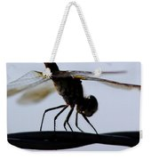 Dragon On The Wire Weekender Tote Bag