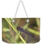 Dragonfly - Little Boy Blue Weekender Tote Bag