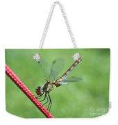 Dragonfly On A String Weekender Tote Bag