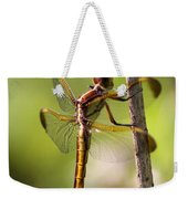 Dragonfly Photo - Yellow Dragon Weekender Tote Bag