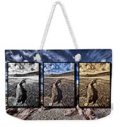 Driftwood Triptych Weekender Tote Bag