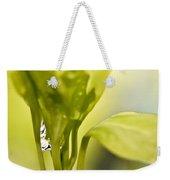 Drop Of Dew Weekender Tote Bag