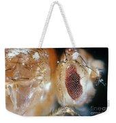 Drosophila Mutant With Bar Eyes Weekender Tote Bag