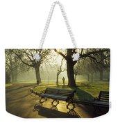 Dublin - Parks, St. Stephens Green Weekender Tote Bag