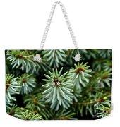 Dwarf Serbian Spruce Weekender Tote Bag