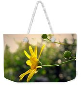 Early Morning Daisy Weekender Tote Bag
