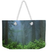 Early Morning In The Forest, Humboldt Weekender Tote Bag