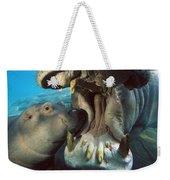 East African River Hippopotamus Weekender Tote Bag