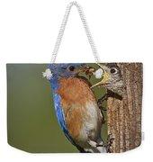 Eastern Bluebird Feeding Chick Weekender Tote Bag