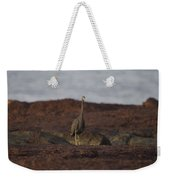 Eastern Reef Egret-dark Morph Weekender Tote Bag