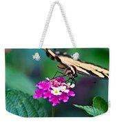 Eastern Tiger Swallowtail 8 Weekender Tote Bag