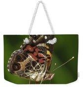 Echinacea Butterfly Meal Weekender Tote Bag