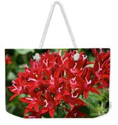 Egyptian Star Cluster Weekender Tote Bag