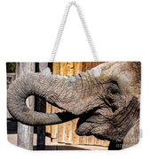 Elephant Feeding Time At The Zoo Weekender Tote Bag