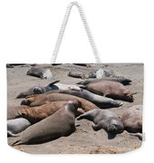Elephant Seal Colony On Big Sur  Weekender Tote Bag