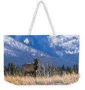 Elk In Forest, Banff National Park Weekender Tote Bag