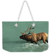 Elk In The Athabasca River Weekender Tote Bag