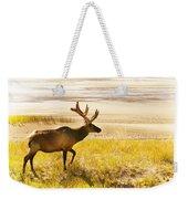 Elk Wanders On Yellow Landscape Weekender Tote Bag