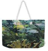 Elkhorn Coral With Schooling Grunts Weekender Tote Bag