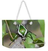 Emerald Fruit Chafer Beetle Weekender Tote Bag