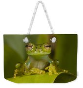Emerald Glass Frog Centrolene Weekender Tote Bag