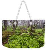 Enchanted Woodland Forest In Fog Blue Ridge Parkway In North Carolina Weekender Tote Bag