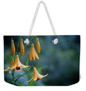 End Of June Two Weekender Tote Bag by Nathan Larson
